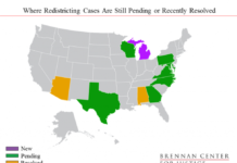 redistricing map